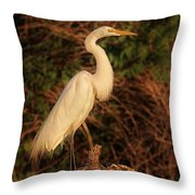 Common Egret Of Palestine Lake Throw Pillow