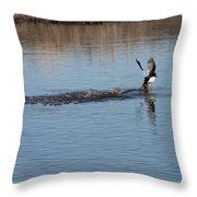 Common Goldeneye Takeoff Throw Pillow