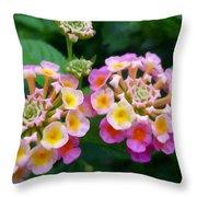 Common Lantana Flower Throw Pillow
