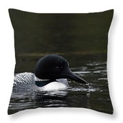 Common Loon 1 Throw Pillow by Larry Ricker