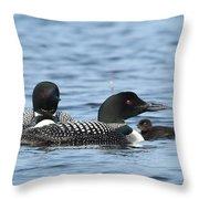 Common Loon Family Throw Pillow