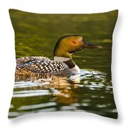Common Loon Pictures 145 Throw Pillow