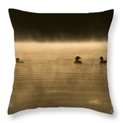 Common Loon Pictures 148 Throw Pillow