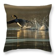 Common Loon Pictures 152 Throw Pillow