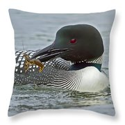 Common Loon With Food Throw Pillow