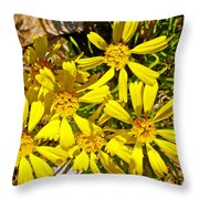 Common Madia On Sheep Creek Geological Loop In Flaming Gorge National Recreation Area-utah  Throw Pillow