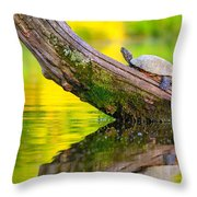 Common Map Turtle Throw Pillow
