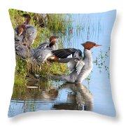 Common Merganser Family 2a Throw Pillow
