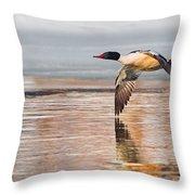 Common Merganser In Flight Throw Pillow