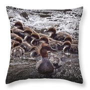 Common Merganser With Chicks Throw Pillow