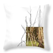 Common Moorhen Throw Pillow