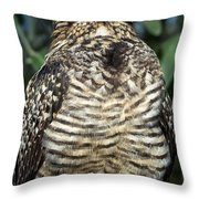 Common Nighthawk Napping Throw Pillow