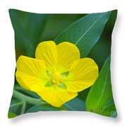 Common Primrose Willow 1 Throw Pillow