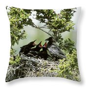 Common Raven Feeding Young In Nest Throw Pillow