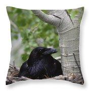 Common Raven Incubating Eggs In Nest Throw Pillow
