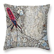 Common Red Bug Along The Seti River Road-nepal  Throw Pillow