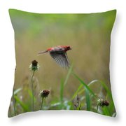 Common Redpoll In Flight Throw Pillow