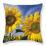 Common Sunflower Field Throw Pillow