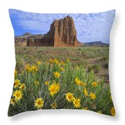 Common Sunflowers And  Temple Of The Sun Throw Pillow by Tim Fitzharris