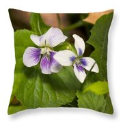 Common Violet Throw Pillow