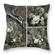 Common Yarrow Collage Throw Pillow