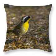 Common Yellowthroat Throw Pillow