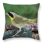 Common Yellowthroat Geothlypis Trichas Throw Pillow