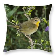 Common Yellowthroat Hen Throw Pillow