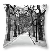 Commons Park Pathway Throw Pillow by Scott Pellegrin