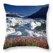 Composite View Of Colony Glacier W Throw Pillow