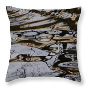 Composition Of Nature Throw Pillow