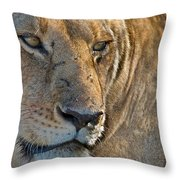 Concentration Throw Pillow
