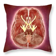 Conceptual Image Of Cranial Nerves Throw Pillow