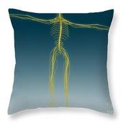 Conceptual Image Of Human Nervous Throw Pillow