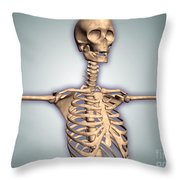 Conceptual Image Of Human Rib Cage Throw Pillow