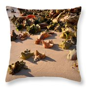 Conch Collection Throw Pillow
