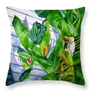 Conch House Tour Throw Pillow