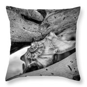 Conch Shell One Throw Pillow
