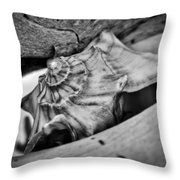 Conch Shell Two Throw Pillow