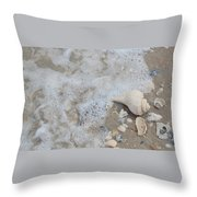 Conch Wash Throw Pillow