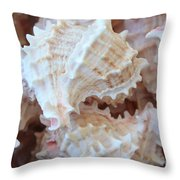 Conches Throw Pillow