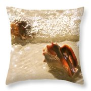 Conchs In Surf 2 Antique Throw Pillow