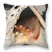 Conchs With Driftwood I Throw Pillow