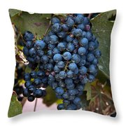 Concord Grapes Throw Pillow