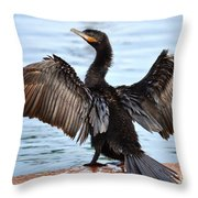 Conductor Throw Pillow by Deb Halloran