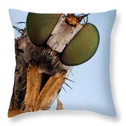 Condylostylus Sp 81 Throw Pillow