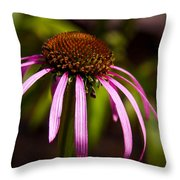 Cone Flower 2 Throw Pillow