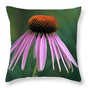 Cone Flower In Vertical Format Throw Pillow