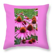 Cone Flowers 2 Throw Pillow