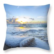 Cone Shell Foam Throw Pillow